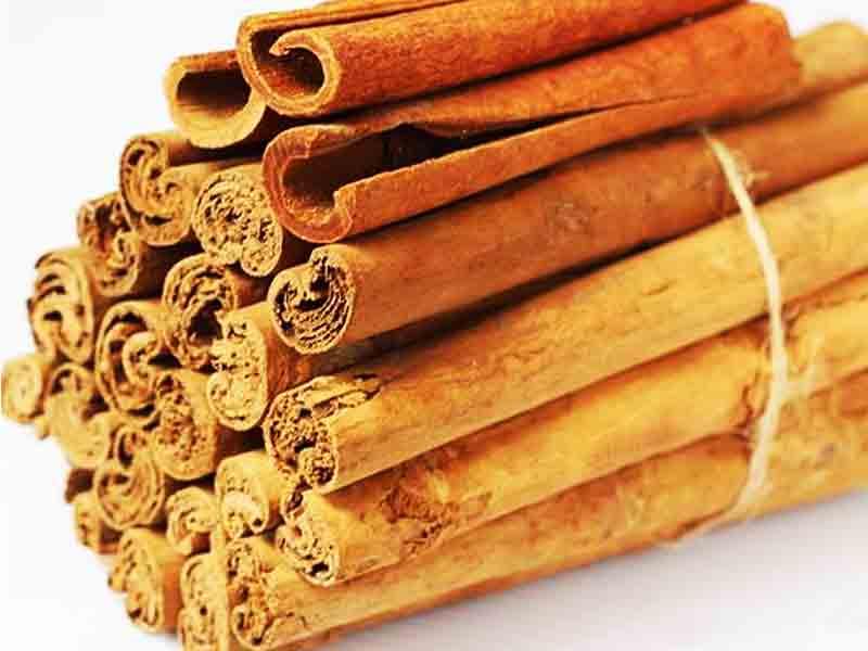 bark of Cinnamon-cassia